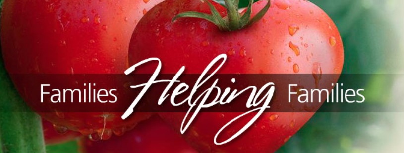 GOL Families Helping Families - Tomatoes